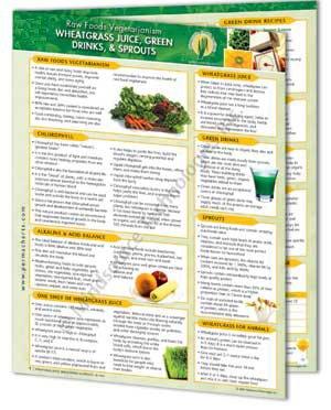 The Benefits of Wheatgrass